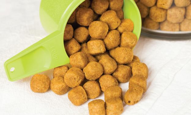 Green cup dog food